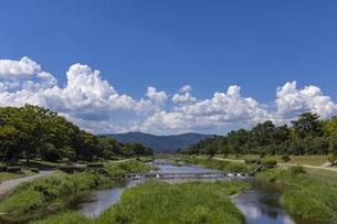 北大路橋からの賀茂川の写真素材 [FYI04931932]