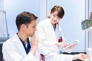 実験室で研究開発・解析・調査をする白衣の男性と女性の写真素材 [FYI04934413]