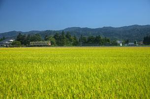田園とローカル線の写真素材 [FYI04936794]