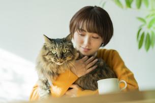 猫とくつろぐ女性の写真素材 [FYI04936954]