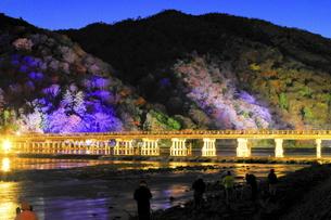 嵐山花灯路の渡月橋の写真素材 [FYI04937664]