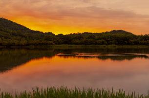 朝焼けの広沢池と水鳥の写真素材 [FYI04938635]