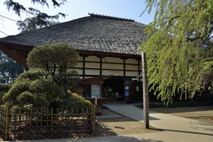 茂林寺 本堂の写真素材 [FYI04938691]