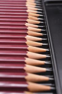 並んだ鉛筆の写真素材 [FYI04938761]