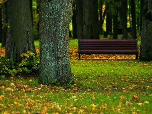 ベラルーシのミンスクにある公園の写真素材 [FYI04938918]