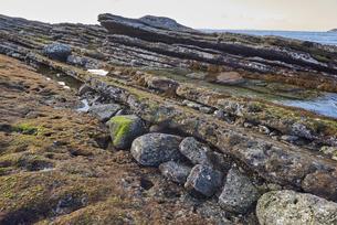 斜めに隆起した海岸の岩場の写真素材 [FYI04939077]