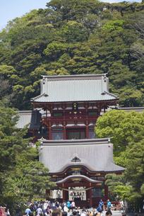 八幡宮の望遠の写真素材 [FYI04939138]