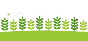 植物/自然 /葉っぱ パターンイラスト (Webフッターデザイン向け)のイラスト素材 [FYI04939284]