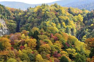 秋の双竜峡の写真素材 [FYI04940726]