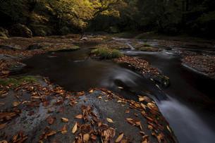 秋の渓谷の写真素材 [FYI04940820]