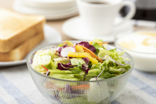 野菜サラダの写真素材 [FYI04941019]