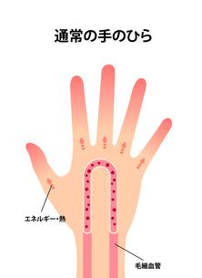 通常の健康な手のイラスト (冷え性の原因)のイラスト素材 [FYI04941563]