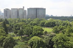 ビジネス街のオアシス・緑ゆたかな日比谷公園の写真素材 [FYI04941684]