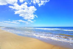 千里浜なぎさドライブウェイと日本海の写真素材 [FYI04941870]