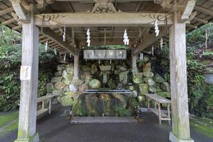 白山比咩神社、参道の手水舎の写真素材 [FYI04942098]
