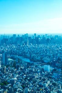 新宿副都心と東京タワーの写真素材 [FYI04942564]