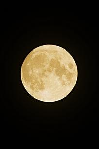 中秋の名月 2021の写真素材 [FYI04942796]