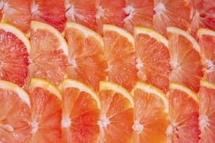 ピンクグレープフルーツの背景素材の写真素材 [FYI04942869]