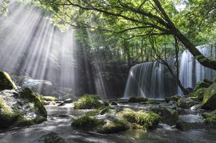 鍋ヶ滝の写真素材 [FYI04942880]