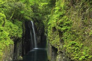 天安河原 真名井の滝 宮崎県の写真素材 [FYI04942943]