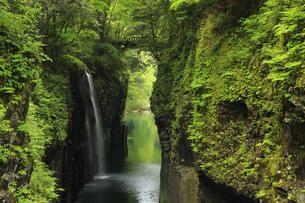 天安河原 真名井の滝 宮崎県の写真素材 [FYI04942944]