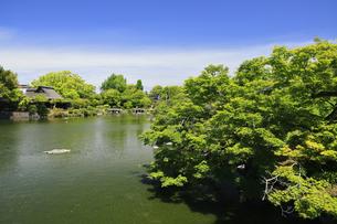 水前寺公園 熊本県の写真素材 [FYI04942983]