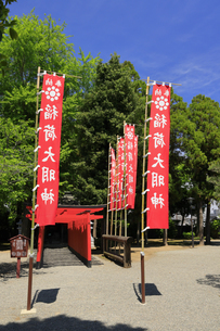 水前寺公園の稲荷神社 熊本県の写真素材 [FYI04942994]