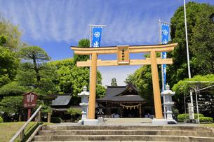 水前寺公園の出水神社 熊本県の写真素材 [FYI04943000]