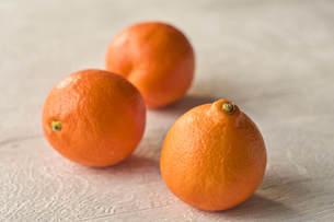 オレンジの写真素材 [FYI04943701]