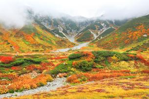 秋の立山連峰 別山と真砂岳に紅葉の写真素材 [FYI04943766]