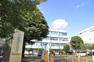 小金井市役所の写真素材 [FYI04944098]