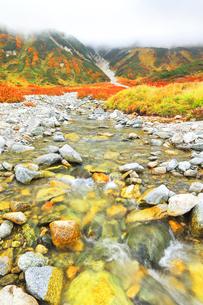 秋の立山連峰 真砂岳に雲と紅葉の写真素材 [FYI04944151]