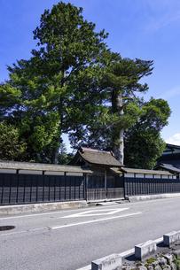 豪商・豪農の館 渡邉邸(新潟県関川村)の写真素材 [FYI04944244]