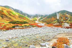 秋の立山連峰 別山と真砂岳に紅葉と清流の写真素材 [FYI04944248]