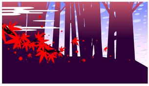 紅葉舞い散る秋の林の中と秋空のイラスト素材 [FYI04944429]