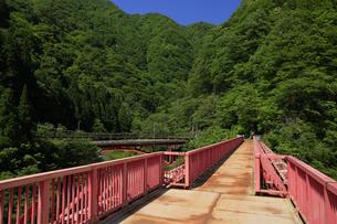 黒部峡谷 山彦橋 富山県の写真素材 [FYI04944553]