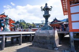 厳島神社の写真素材 [FYI04945470]