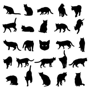 猫のシルエットのイラストセットのイラスト素材 [FYI04945596]