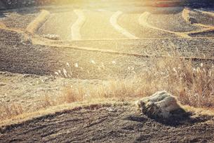 冬の田舎の写真素材 [FYI04945985]