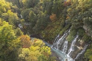 美瑛町・白髭の滝の秋の写真素材 [FYI04946484]