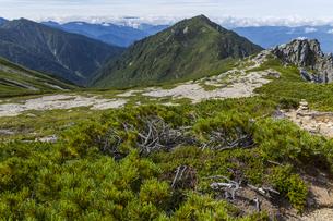 極楽平、宝剣岳と三沢岳分岐から三沢岳を望むの写真素材 [FYI04946654]