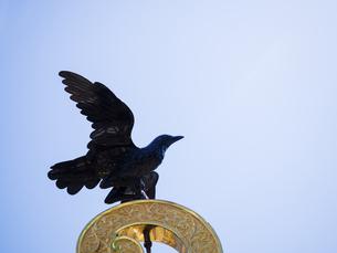 御輿の大鳥の写真素材 [FYI04946907]