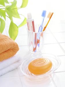 2本の歯ブラシと石鹸の写真素材 [FYI04946959]