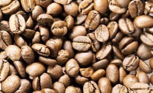 コーヒー豆の背景素材の写真素材 [FYI04947033]