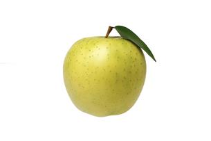 緑色のりんごの写真素材 [FYI04948684]