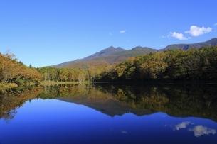 世界自然遺産 知床五湖の写真素材 [FYI04948690]