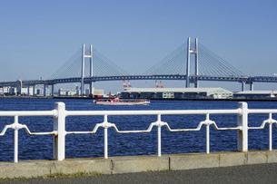 海際の白い手摺からベイブリッジを一望 横浜の山下公園 (神奈川県横浜市) の写真素材 [FYI04948832]