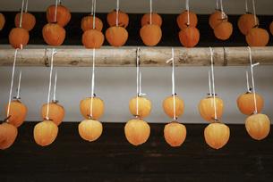軒下の干し柿の写真素材 [FYI04948957]
