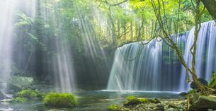 熊本県 風景 鍋ヶ滝の写真素材 [FYI04949211]