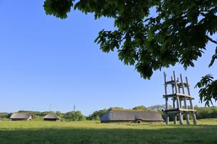 三内丸山遺跡 大型堀立柱建物の写真素材 [FYI04949922]